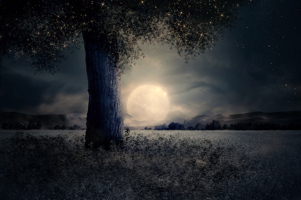Night, Landscape, Tree, Fairy Tale, Fantasy, Moon