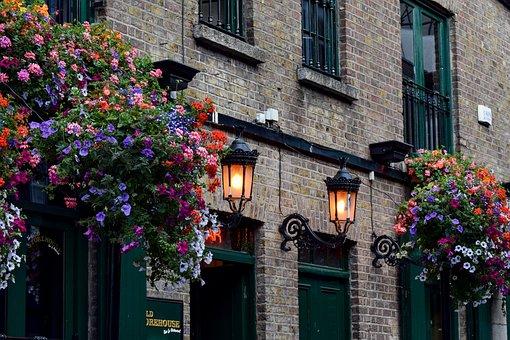 Kroeg, Dublin, Ierland, Bloemen Pracht