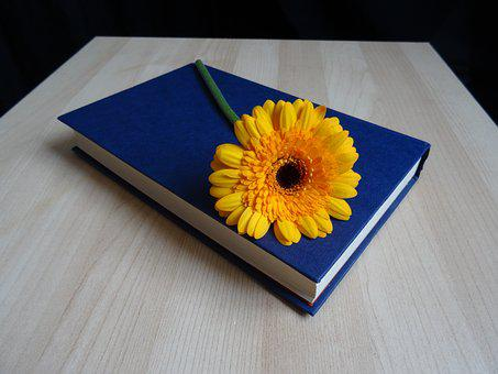 A printed book with a sunflower signifying 40 advantages and disadvantages of printed books and eBooks