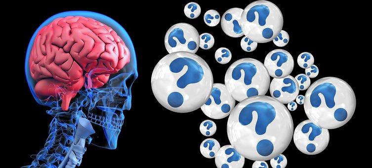 Brain, Question Mark, Alzheimer'S