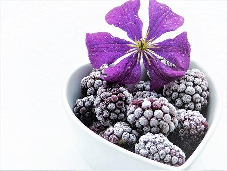Blackberries, Frozen, Clematis, Purple