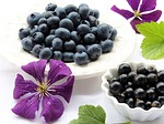 blueberries, clematis