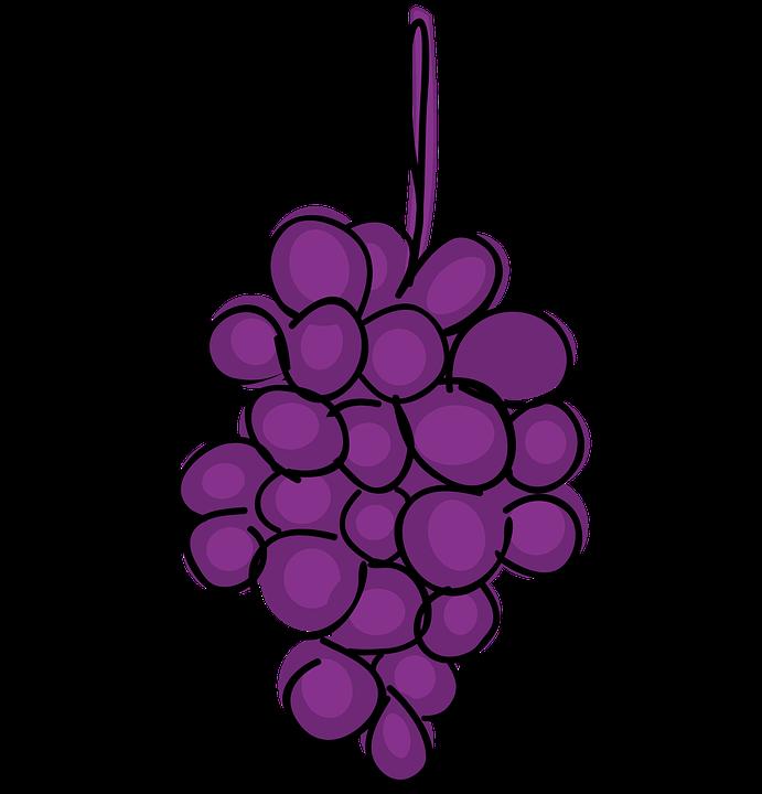 uva frutas desenhos animados imagens grátis no pixabay