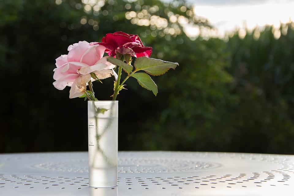 Rose Éternelle Eau