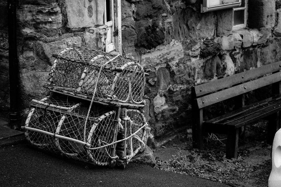 El Cangrejo De Las Cestas, Escocia, Pesca, Langosta