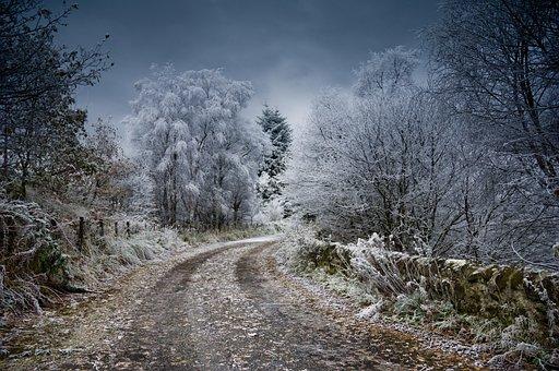 Frost, Scotland, Winter, Snow, Nature
