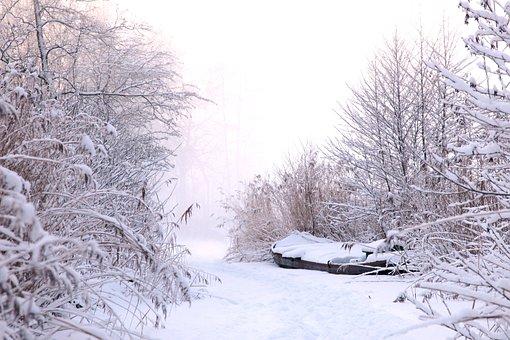 冬天, 雪, 冰, 冻结, 弗罗斯特, 景观, 性质, 徒步旅行, 成熟, 滑冰