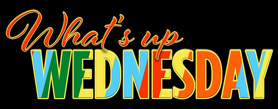 Expression, Emotion, Motivation, Wednesday, Weekday