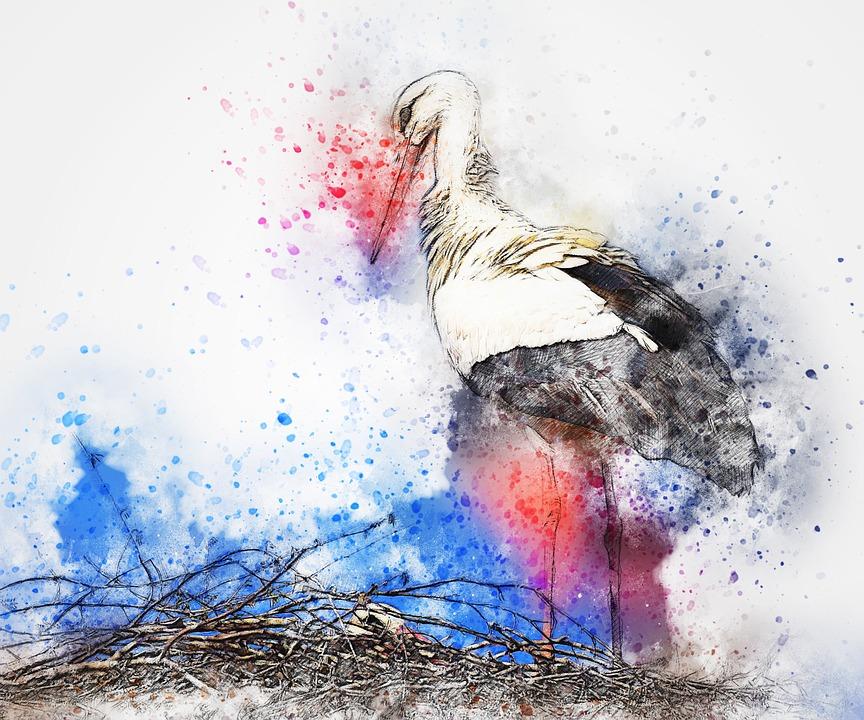 Kuş Leylek Yuva Pixabayde ücretsiz Resim