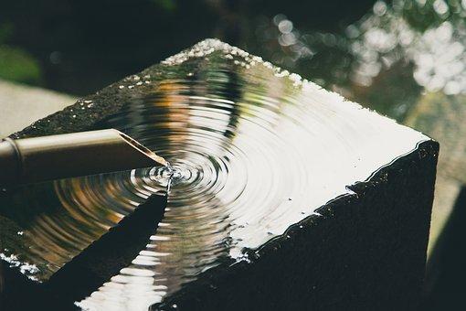 Bambus Bilder Pixabay Kostenlose Bilder Herunterladen