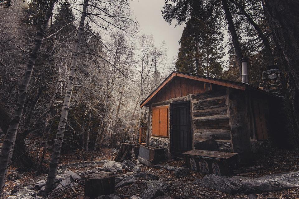 Free Photo Abandoned House Outdoor Forest Free Image