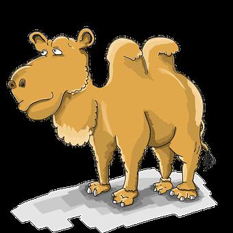 Para Nietzsche la mayoría social son camellos, que portan el espíritu de la pesadez