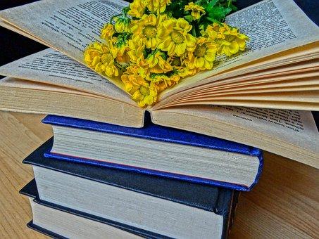 書籍, 読み取り, 小説, 文学, 本の虫, ストーリー, レジャー, 知識