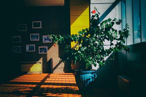 Architecture, Building, Indoor, Interior