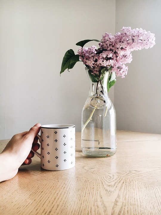 Display Pink Flower Free Photo On Pixabay