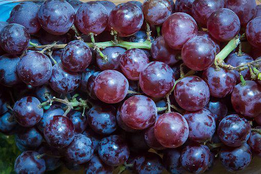 Grapes, Fruit, Winegrowing, Red Grapes
