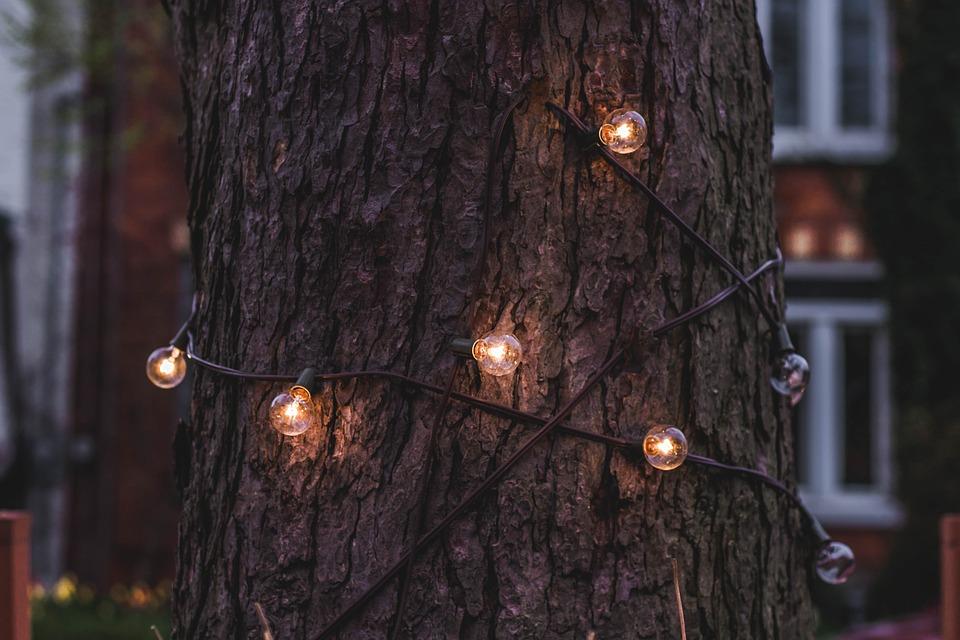 christmas lights wire tree wood