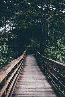Jembatan Gantung Gambar Pixabay Unduh Gambar Gambar Gratis