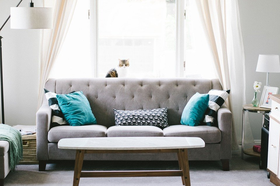 Living Room, Sofa, Interior Design, Decoration, Pillow