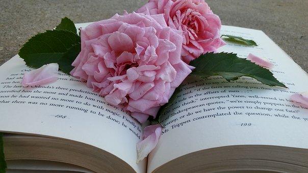 La Fiesta de Sant Jordi, Libro y Rosa