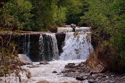 Chute D'Eau, Eau, Forêt, Nature