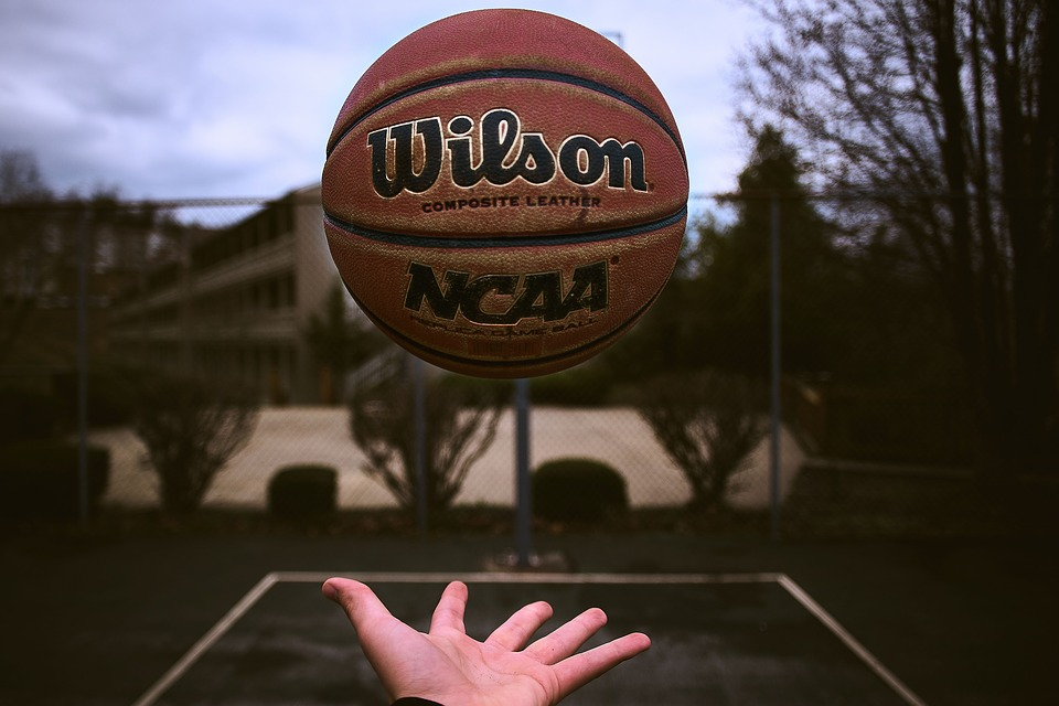Ball, Basketball, Sport, Game, Fitness, Hand, Palm