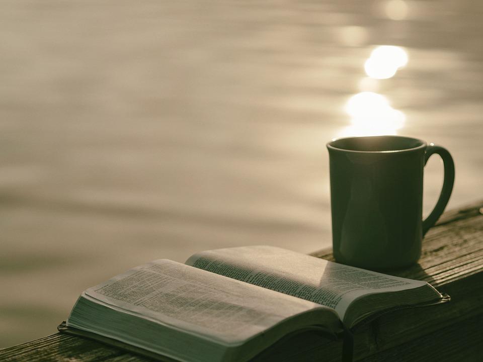 Книги, Страницы, Лист, Роман, Библия, Стихи, Глава