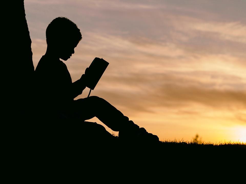 Personas, Hombre, Niño, Leer, Libro, Puesta De Sol