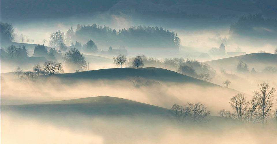 Pagórkowaty, Wieś, Średniogórze, Drzewa, Roślin, Natura