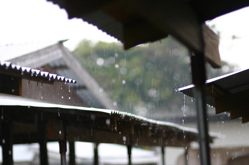雨の日, 夏, 雨, 屋外, 日, 天気予報, 季節, 屋根