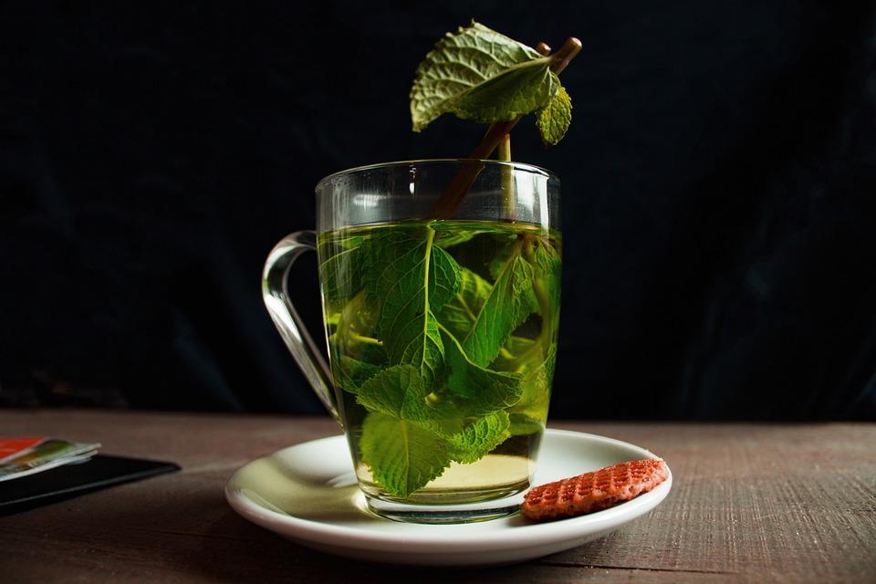 Green Tea Tee - Free photo on Pixabay