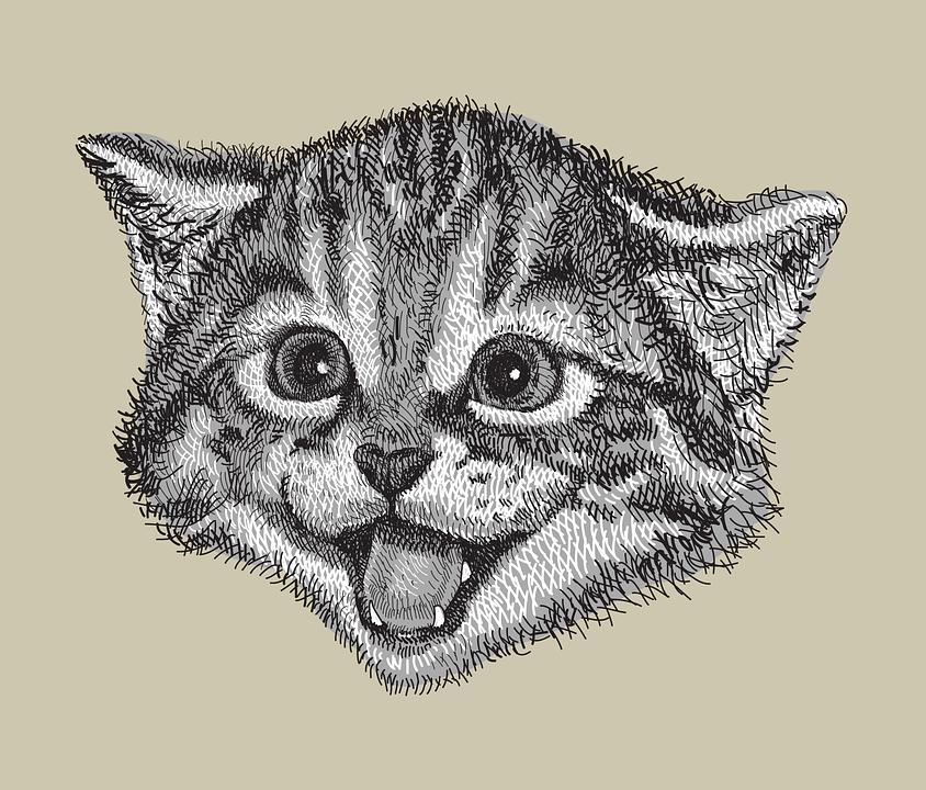 Kocka Vykres Rucne Kreslenou Vektorova Grafika Zdarma Na Pixabay