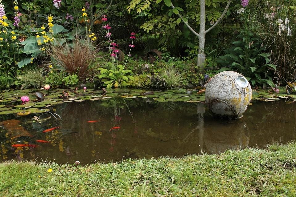 See Teich Garten Natur Wasser Landschaft