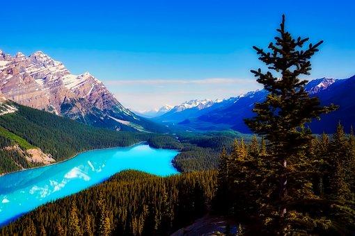 Lac Peyto, Canada, Montagnes, Paysage