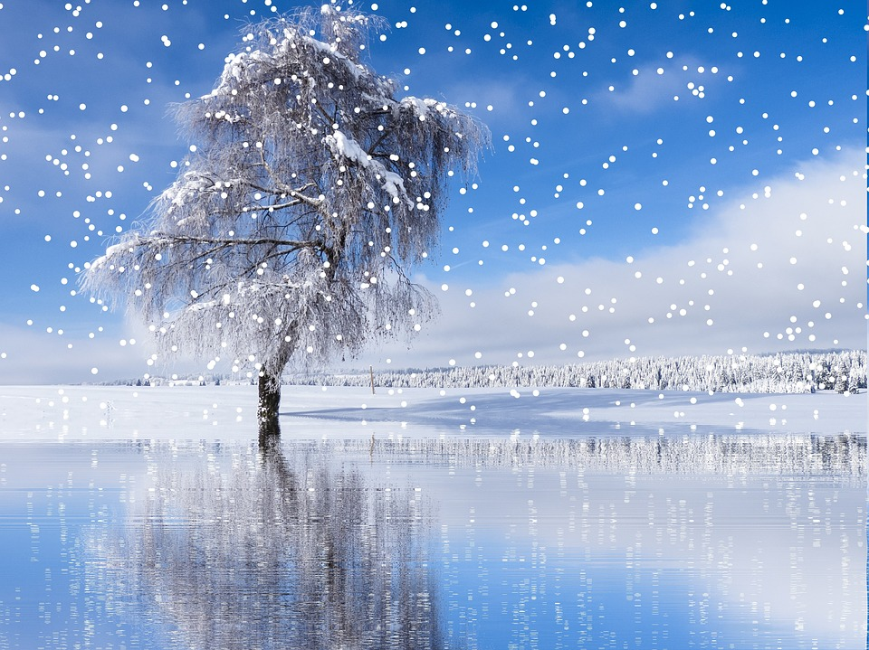 Winter Snow Snowfall · Free photo on Pixabay