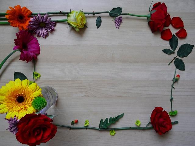frame border flower  u00b7 free photo on pixabay