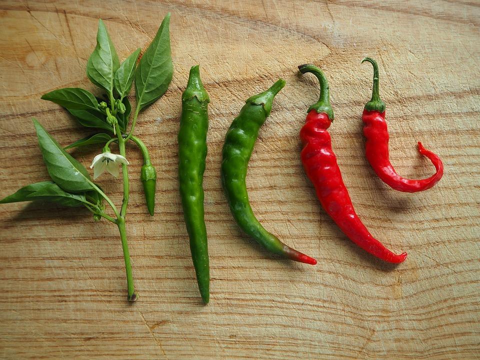 Chili, Paprika, Scharf, Gewürz, Peperoni, Rot, Gemüse