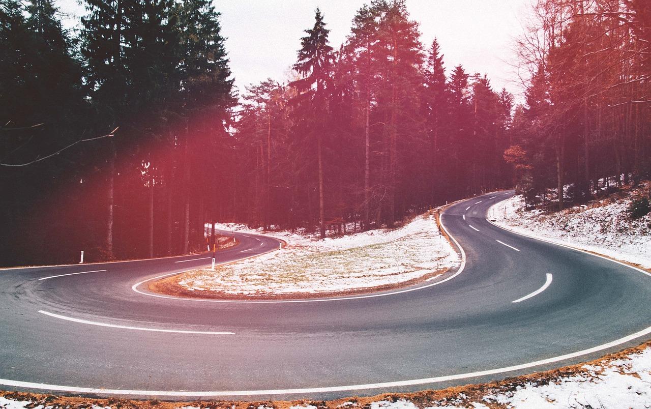 может крепиться картинки повороты лесных дорог относится отряду