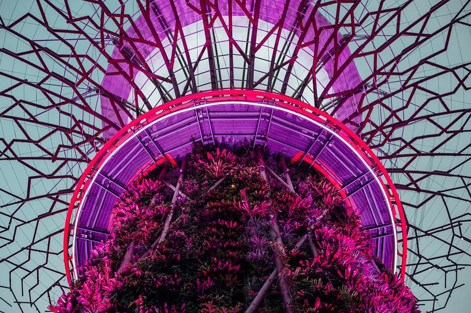 Violet Tanaman Bunga Foto Gratis Di Pixabay