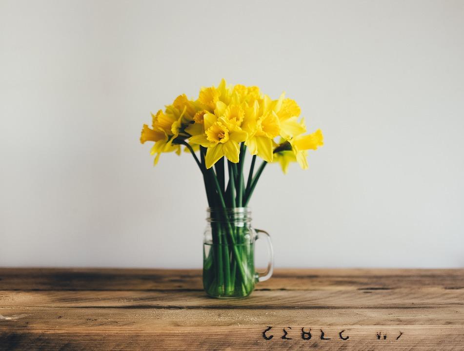 Yellow flower stem free photo on pixabay yellow flower stem water glass wooden table wall mightylinksfo