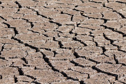 Drought, Ground, Cracks, Dehydrated, Dry