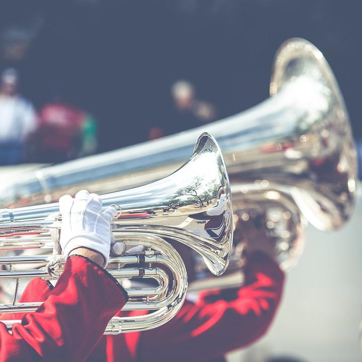 Trumpet Gloves