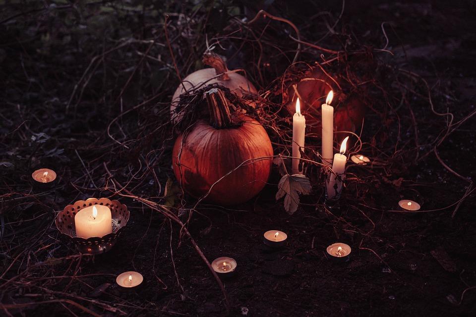 Pumpkin, Trick Or Treat, Halloween