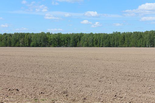 하늘, 필드, 토지, 조 경, 경작, 농업, 자연, 쟁기, 농촌, 자연의