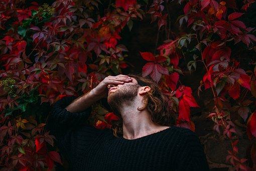 人, 男, だけで, 混乱, 思考, 葉, 植物, 自然