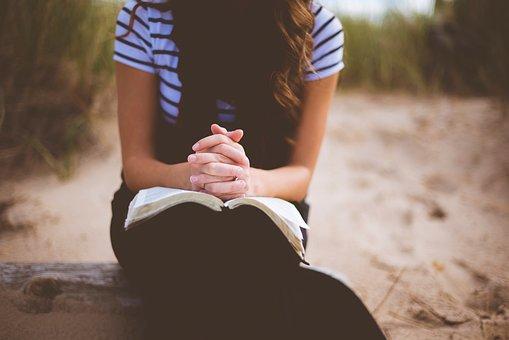 人, 女孩, 单, 坐, 木材, 阅读, 书, 圣经