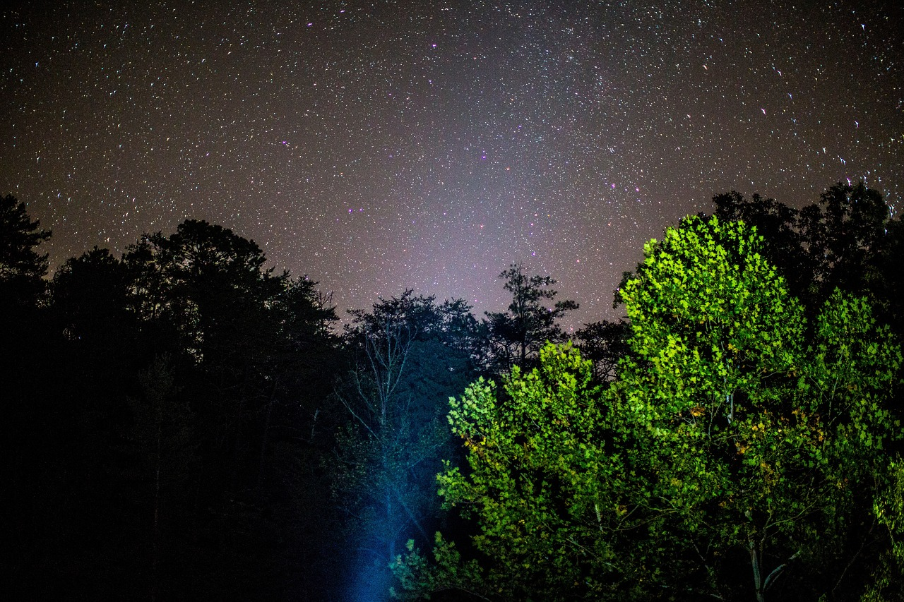 Картинки природа полночь