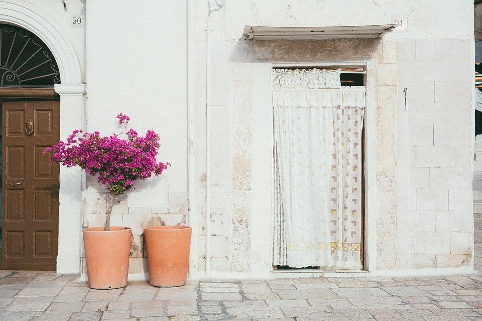 Gordijn Voor Deur : Deur muur bloem · gratis foto op pixabay