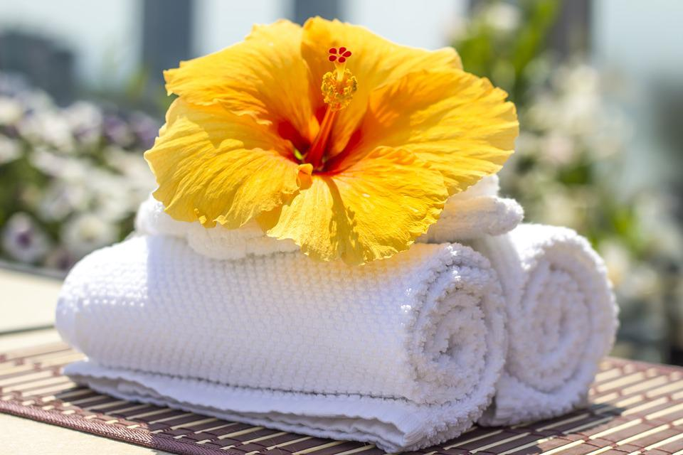 Towel, Hibiscus, Clean, Care, Salon, Spa, White, Bath