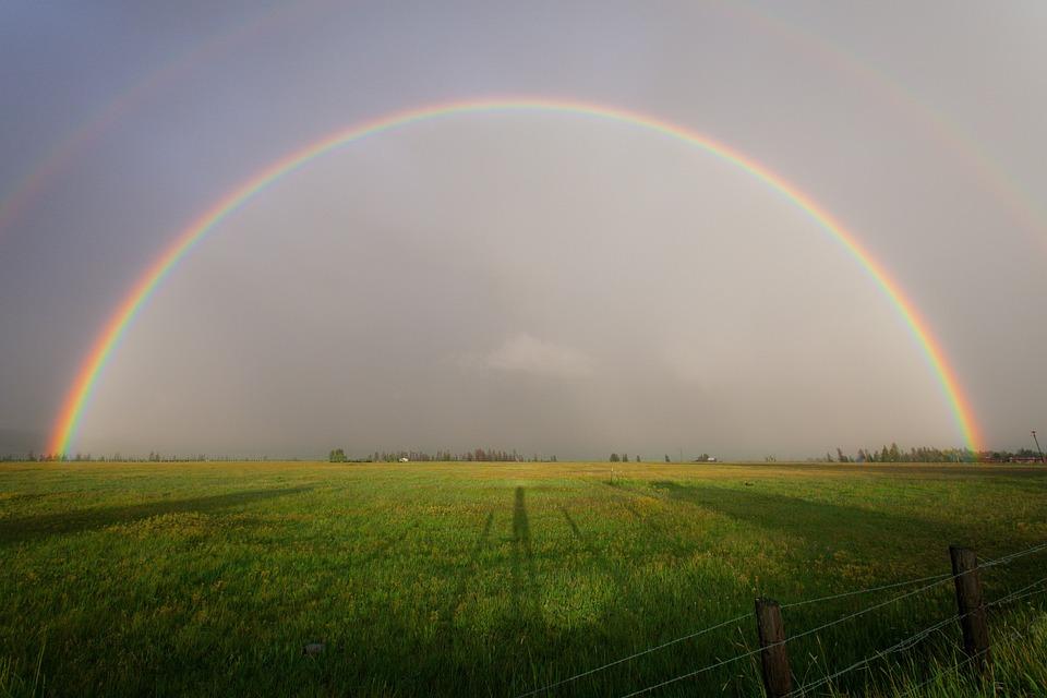 Nature, Landscape, Plains, Farm, Grass